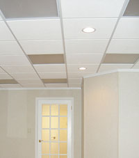 Basement Ceiling Tiles for a project we worked on in Hamburg, New York